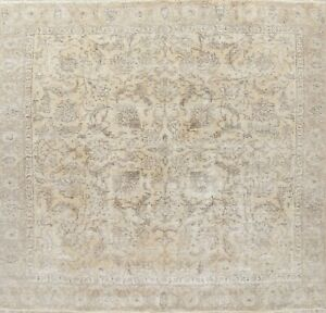 Antique Persian Area Wool Rug Distressed Handmade Floral Oriental Square 9 X 9