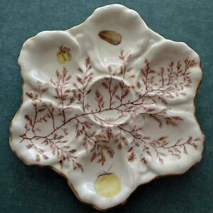 Antique 6 Well Oyster Plate With Seaweed Decoration
