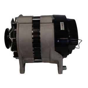 Alternator New Massey Ferguson 240 290 250 690 698 270 670 253 12038