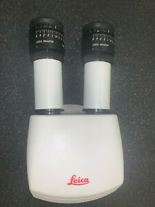 Leica 10446618 Inclined Binocular Tube 45 Good Condition With 2 Eyepieces