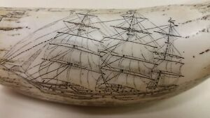 Faux Resin Replica Scrimshaw Whale Tooth Ship The Cultivator Carved 6