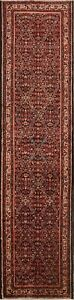 Palace Size Traditional Hallway Runner Rugs Handmade Wool Oriental Carpet 3 X 14