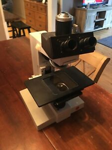 Leitz Ortholux Ii Microscope
