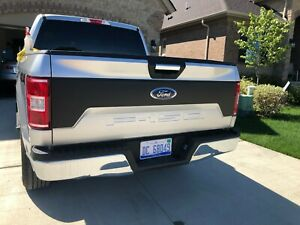 2015 2020 Ford F 150 Tailgate Decal Kit Real Nice