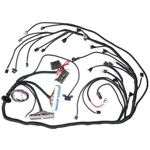 Standalone Wiring Harness T56 Or Non electric Tran 4 8 5 3 6 0 Dbc Ls1 1997 2006