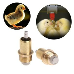 5x Poultry Chicken Automatic Water Drinking Screw In Type Drinker Nipples Feeder