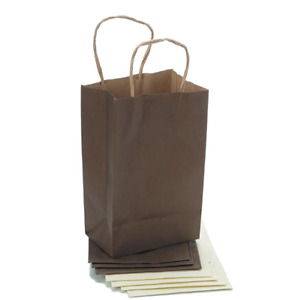 Darice Paper Bags 5 25 X 8 25 X 3 25 Inches Assorted Small Shimmer Pack Of 8
