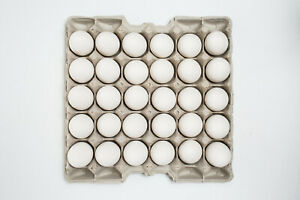90 Pcs Egg Cartons Paper Trays Flats Hatching Craft Poultry 30 Ct Tray