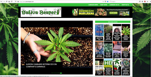 Established Cannabis Hemp News Website For Sale Sativareaper com