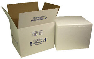 Insulated Styrofoam Cooler Shipping Box Refrigerated Cold Cool Ship 10 5 X 8 X 6