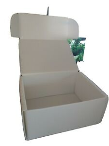 Storage Bin Box White Plastic Corrugated 10 X 7 5 X 4 5 Clean Air Box Circuit