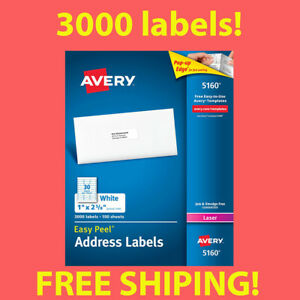 1 Box Of 3000 Avery 5160 Address Mailing Shipping Labels 1 X 2 5 8 Free Ship