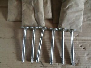 Oliver Tractor 1800 1850 Lp Gas Brand New 6 Exhaust Valves Nos