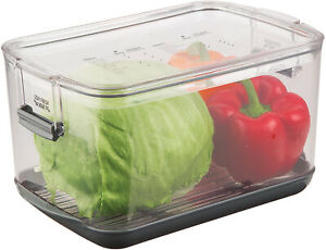 Prepworks by Progressive Produce ProKeeper Storage Container with Stay Fresh $40.00