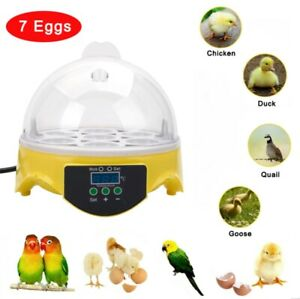 Mini Digital Eggs Incubator For Hatching 7 Eggs Chicken Duck Reptile Ac 110v
