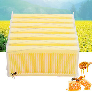 7pcs Hive Frames Beehive Raw Bee Auto Hive Frame Kit Beekeeping Harvesting Honey