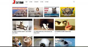 Cat News videos Guides Affiliate Product Website 100 Automated Website