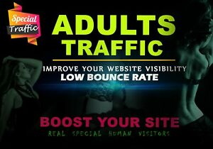 30 000 Real Organic Adult Visitors website Traffic Usa And Europe