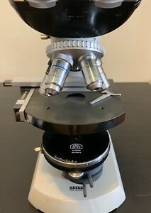 2 Zeiss Standard Phase Contrast Microscopes used