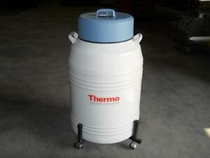 Thermo Electron Liquid Nitrogen ln2 Dewar Cryogenic Cryo Model 8031 Tank