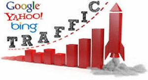 Traffic Re seller Business Turnkey Website Full Setup And Install Business