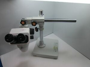 Accu scope 3075 Series Stereo Microscope 6 7 45x Wf10x 22mm W Olympus Stand