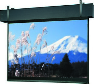 Professional Electrol Matte White Electric Projection Screen 9 H X 12 W