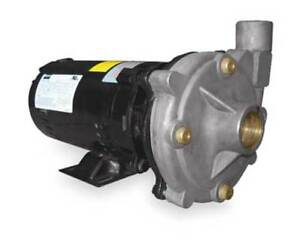 Dayton 2zxk9 Stainless Steel 1 Hp Centrifugal Pump 208 230 460v