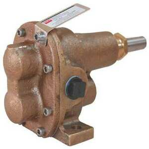 Rotary Gear Pump Head 1 In 1 Hp Dayton 4khh6
