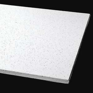 Armstrong 1720b 24 L X 24 W Clean Room Ceiling Tile