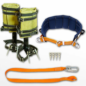 Tree Climbing Spike Set Spurs Gaffs Safety Belt Lanyard With Carabiner