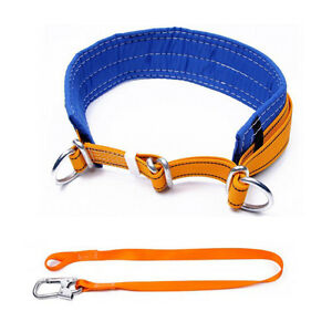Tree Climbing Safety Belt With 2 D rings Fall Protection Safety Lanyard