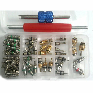 102pcs Car R12 R134a A C Air Conditioner Schrader Valve Core Remover Tool Kit