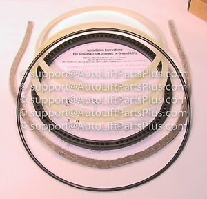 Seal Kit For Manitowoc Lift 10 5 8 Pistons In Ground Auto Lift K34114