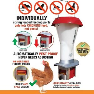 Poultry Chicken Feeding Kit Automatic Pests Rats Vermin Proof Anti spill Feeder