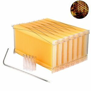 7pcs Automatic Flow Raw Frames Honey Beekeeping Beehive Harvesting Us Stock