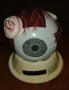 Vintage Nystrom Human Eyeball Eye Anatomical Model Stand Lesson Plan