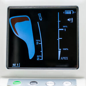 color Lcd Dental Dentist Endodontic Apex Locator Root Canal Meter From Usa