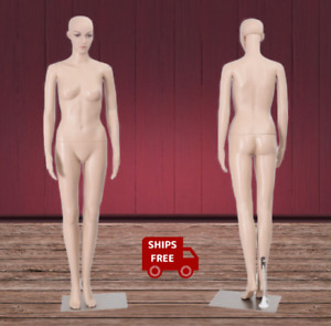 Full Size Straight Female Mannequin Plastic Realistic Display Manikin W Base