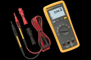 Fluke 174 True rms Multimeter With Test Leads