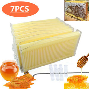 Bee Comb 7pcs Honey Hive Frames Auto Honey Beekeeping Beehive Us Stock