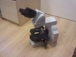 Microscope Nikon Eclipse E600 Ergo Head No Stand