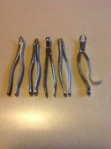 Dental Forcep Lot Dentist Tools Tooth Extraction