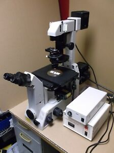 Nikon Eclipse Te300 Inverted Fluorescence Microscope Plan Fluor 10x 40x Trinoc