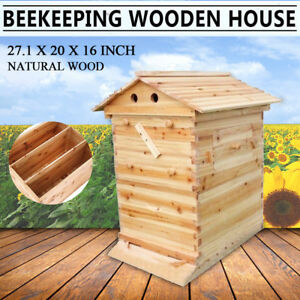 Beehive Wooden Beekeeping House Hive Honey 2 box For 7xauto Flow Raw Frame Us