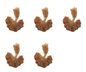 100 Pcs Kraft Paper Tags Jewelry Price Tags With String 3 8 X 7 8 pack Of 5