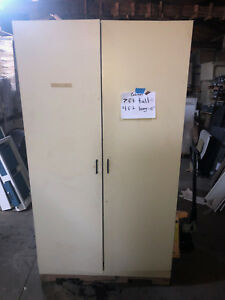 Tall Laboratory Storage Cabinet With Shelves And Swinging Doors 7 x4 x19