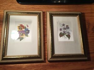 2 Vtg Art Matching Picture Frames With Botanical Prints In Them Will Hold 5x7 S