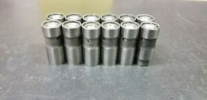 235 Chevy Hydraulic Lifters