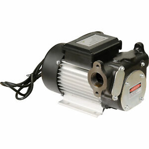 Roughneck Cast Iron Diesel Fuel Transfer Pump 22 Gpm 120 Volt Ac